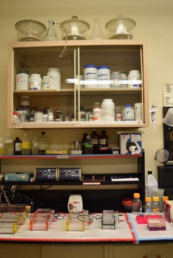 """Clean Lab"""